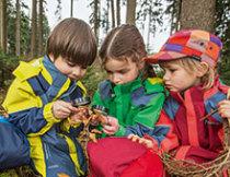 Ehrenamtlich tätig als ÖTK Jugendleiter, mit Kindern die Natur entdecken, Jugendcamp