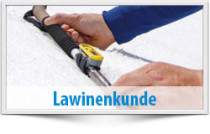 Lawinenkunde, Lawinenkurse, Ausbildung LVS