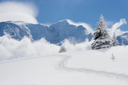 Alpinvereine in Österreich, 150 Jahre Wanderkultur
